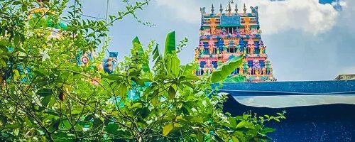 pungudutivu-perunkadu-sivan-temple-5